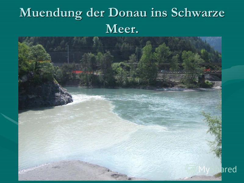 Muendung der Donau ins Schwarze Meer.