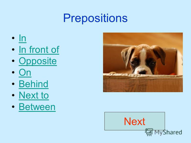 Prepositions In In front of Opposite On Behind Next to Between Next