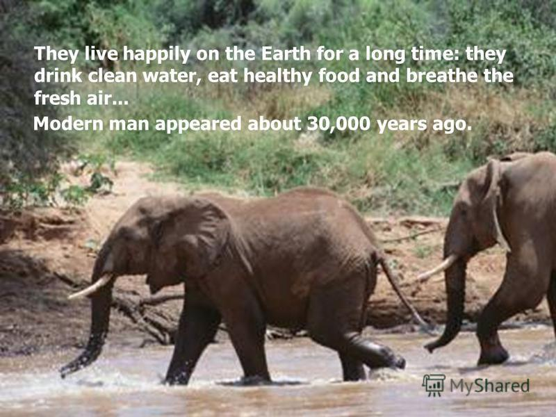 They live happily on the Earth for a long time: they drink clean water, eat healthy food and breathe the fresh air... Modern man appeared about 30,000 years ago.