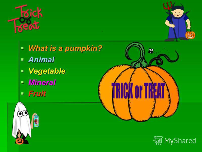 What is a pumpkin? What is a pumpkin? Animal Animal Vegetable Vegetable Mineral Mineral Fruit Fruit