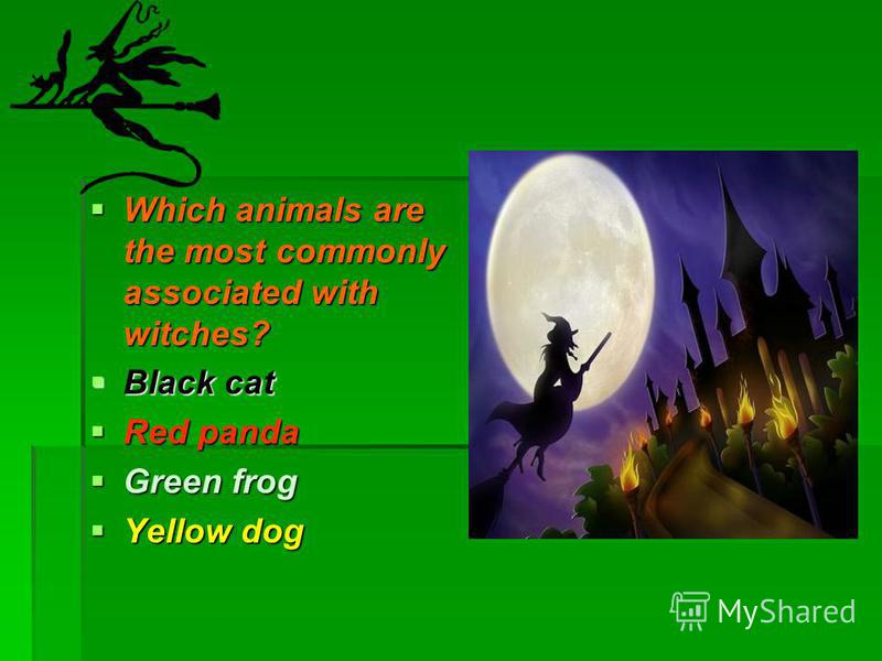 Which animals are the most commonly associated with witches? Which animals are the most commonly associated with witches? Black cat Black cat Red panda Red panda Green frog Green frog Yellow dog Yellow dog