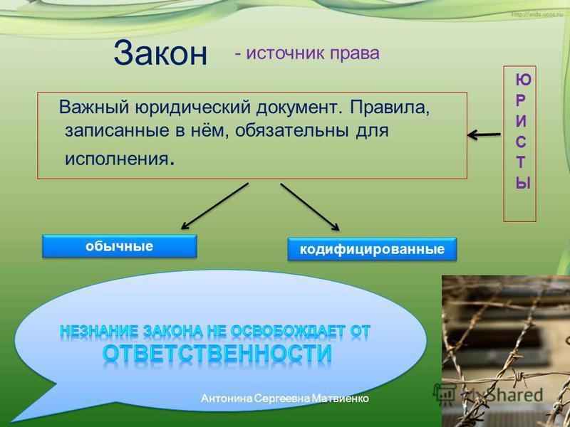 Закон Важный юридический документ. Правила, записанные в нём, обязательны для исполнения. обычные кодифицированные - источник права Антонина Сергеевна Матвиенко