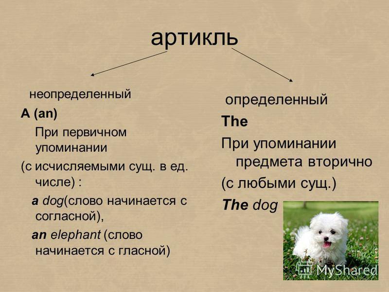 артикль определенный The При упоминании предмета вторично (c любыми сущ.) The dog неопределенный A (an) При первичном упоминании (с исчисляемыми сущ. в ед. числе) : a dog(слово начинается с согласной), an elephant (слово начинается с гласной)
