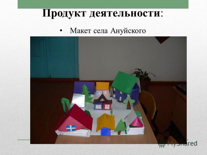 Продукт деятельности: Макет села Ануйского