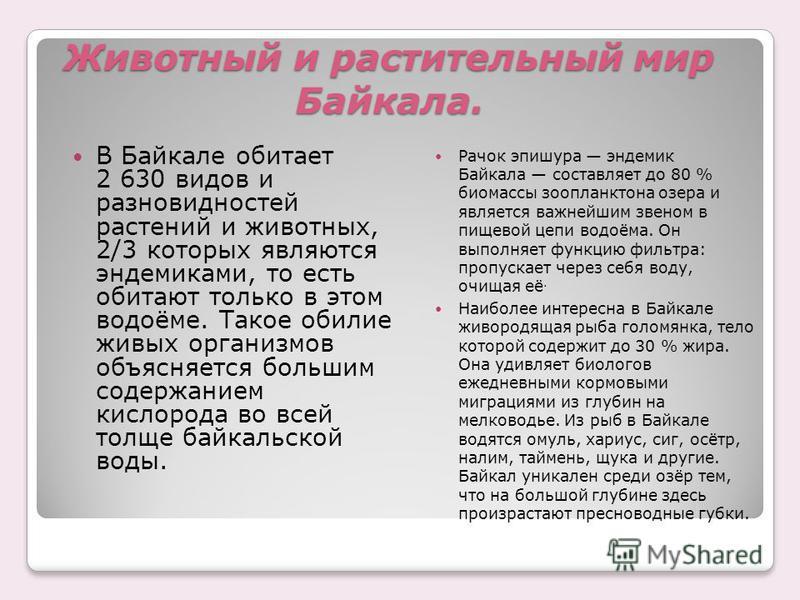 Животный и растительный мир Байкала. В Байкале обитает 2 630 видов и разновидностей растений и животных, 2/3 которых являются эндемиками, то есть обитают только в этом водоёме. Такое обилие живых организмов объясняется большим содержанием кислорода в