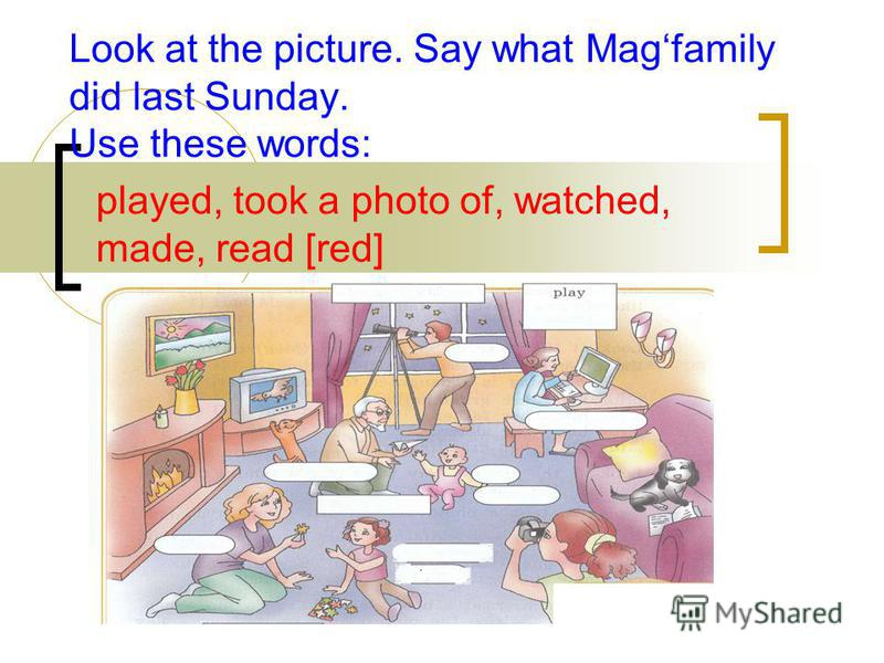 Look at the picture. Say what Magfamily did last Sunday. Use these words: played, took a photo of, watched, made, read [red]