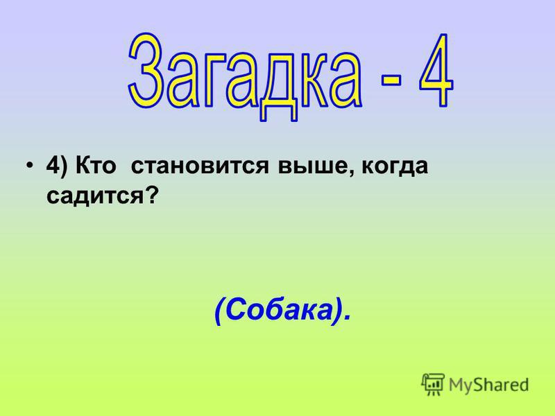 4) Кто становится выше, когда садится? (Собака).
