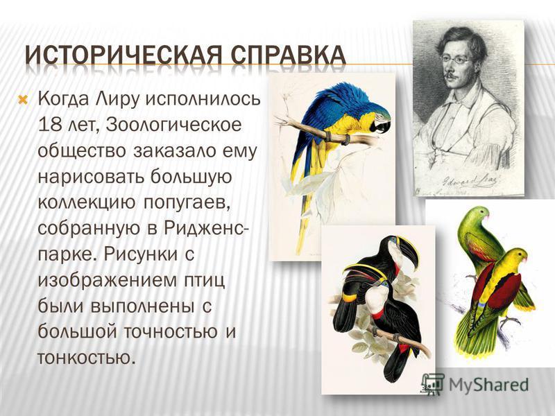 Когда Лиру исполнилось 18 лет, Зоологическое общество заказало ему нарисовать большую коллекцию попугаев, собранную в Ридженс- парке. Рисунки с изображением птиц были выполнены с большой точностью и тонкостью.
