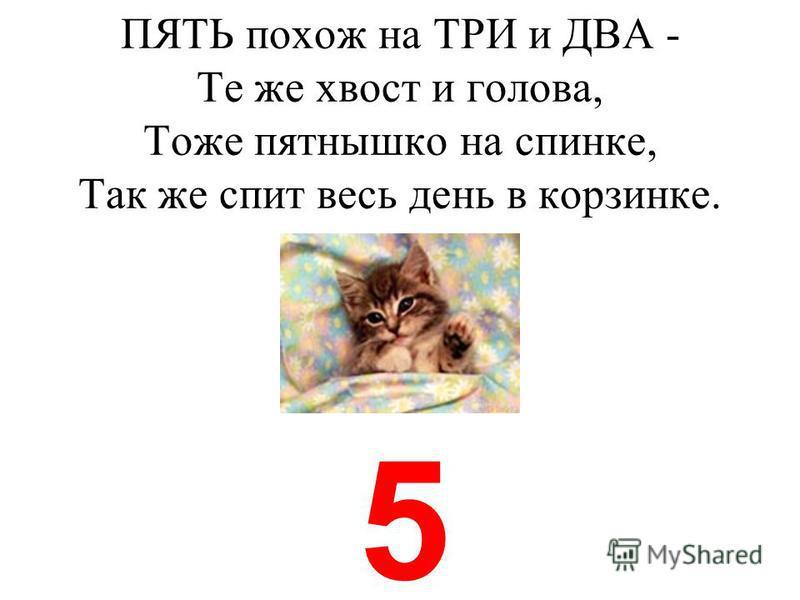 ПЯТЬ похож на ТРИ и ДВА Те же хвост и голова, Тоже пятнышко на спинке, Так же спит весь день в корзинке. 5