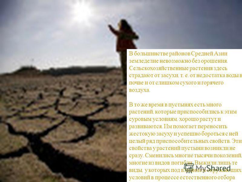 В большинстве районов Средней Азии земледелие невозможно без орошения. Сельскохозяйственные растения здесь страдают от засухи, т. е. от недостатка воды в почве и от слишком сухого и горячего воздуха. В то же время в пустынях есть много растений, кото