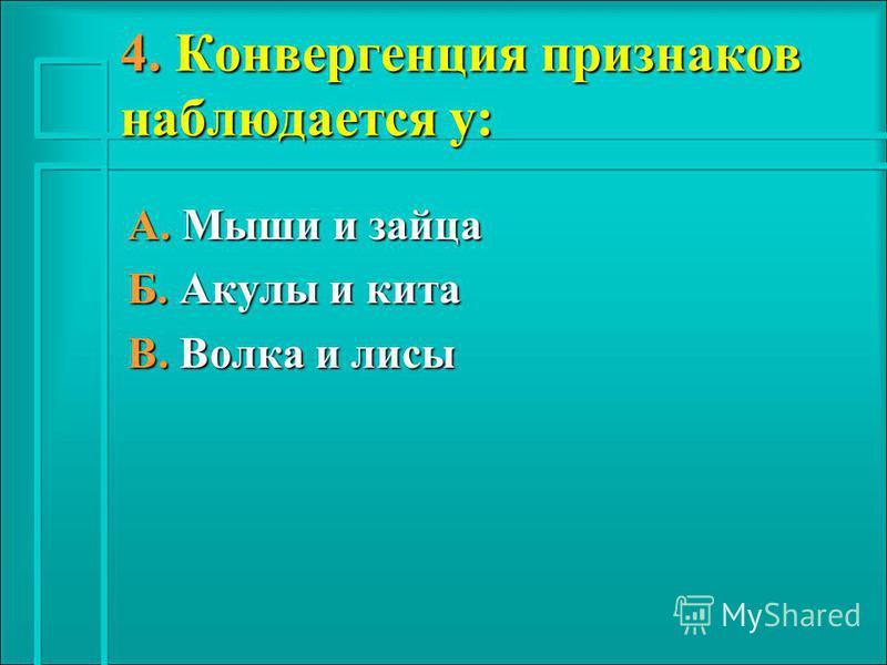 4. Конвергенция признаков наблюдается у: А. Мыши и зайца Б. Акулы и кита В. Волка и лисы
