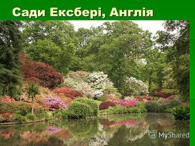 Сади Ексбері, Англія