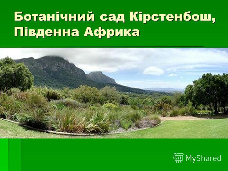 Ботанічний сад Кірстенбош, Південна Африка