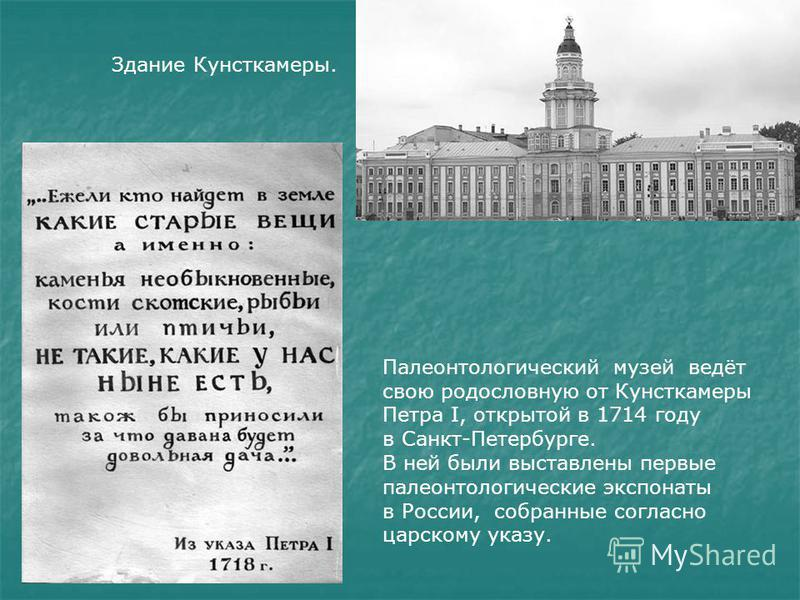 Палеонтологический музей ведёт свою родословную от Кунсткамеры Петра I, открытой в 1714 году в Санкт-Петербурге. В ней были выставлены первые палеонтологические экспонаты в России, собранные согласно царскому указу. Здание Кунсткамеры.