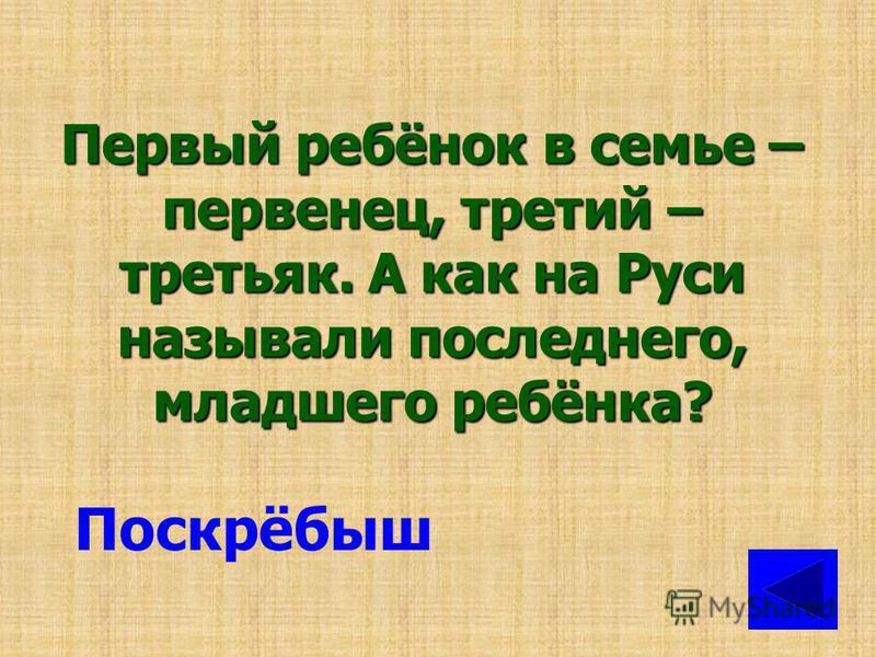 Как на Руси называли пару лошадей или волов, запряжённых в одну упряжку? Супруги