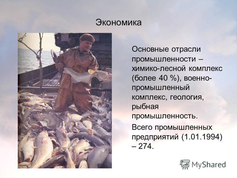 Экономика Основные отрасли промышленности – химико-лесной комплекс (более 40 %), военно- промышленный комплекс, геология, рыбная промышленность. Всего промышленных предприятий (1.01.1994) – 274.