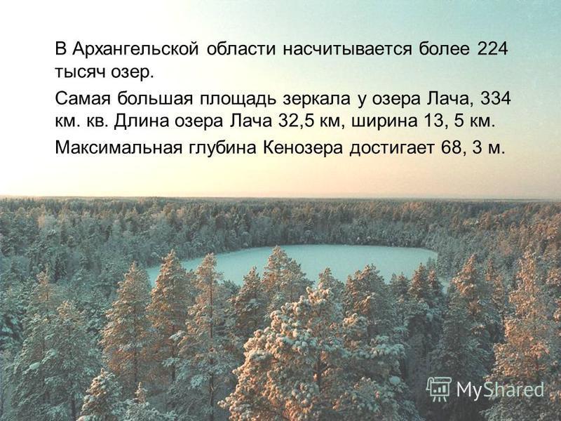 В Архангельской области насчитывается более 224 тысяч озер. Самая большая площадь зеркала у озера Лача, 334 км. кв. Длина озера Лача 32,5 км, ширина 13, 5 км. Максимальная глубина Кенозера достигает 68, 3 м.