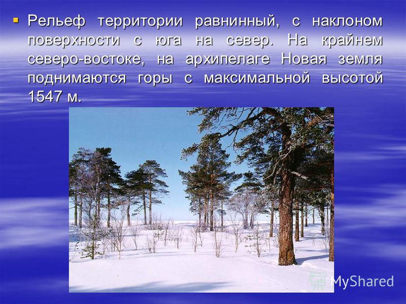 Рельеф территории равнинный, с наклоном поверхности с юга на север. На крайнем северо-востоке, на архипелаге Новая земля поднимаются горы с максимальной высотой 1547 м. Рельеф территории равнинный, с наклоном поверхности с юга на север. На крайнем се
