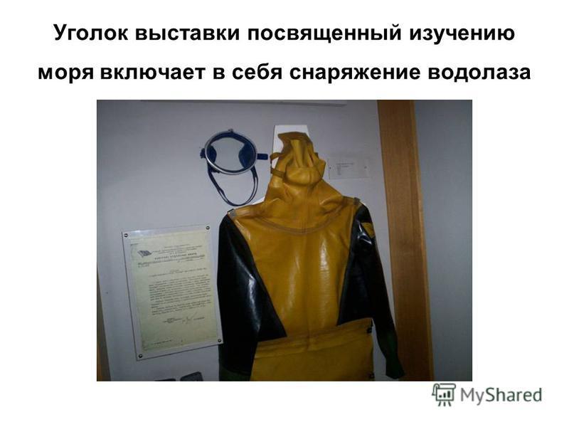 Уголок выставки посвященный изучению моря включает в себя снаряжение водолаза
