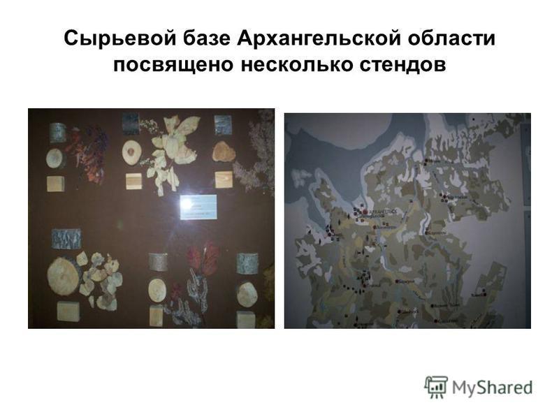 Сырьевой базе Архангельской области посвящено несколько стендов