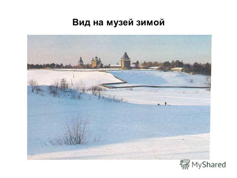 Вид на музей зимой
