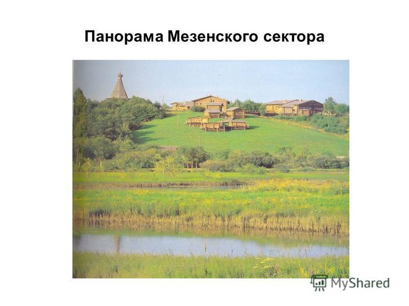Панорама Мезенского сектора