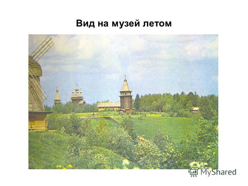 Вид на музей летом