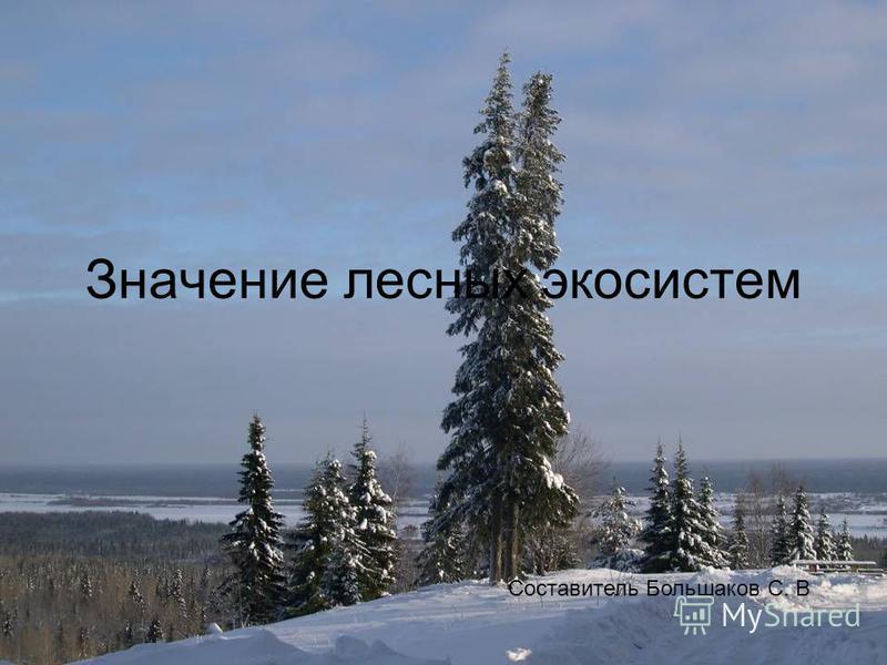 Значение лесных экосистем Составитель Большаков С. В