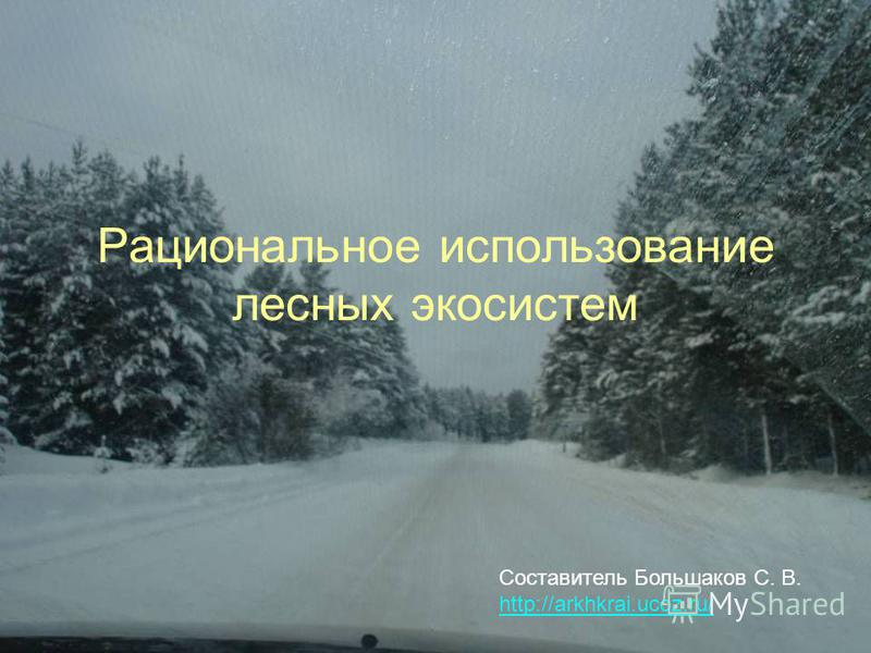 Рациональное использование лесных экосистем Составитель Большаков С. В. http://arkhkrai.ucoz.ru/