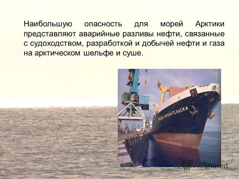 Наибольшую опасность для морей Арктики представляют аварийные разливы нефти, связанные с судоходством, разработкой и добычей нефти и газа на арктическом шельфе и суше.