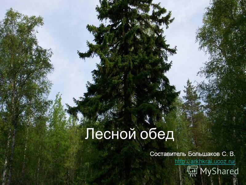 Лесной обед Составитель Большаков С. В. http://arkhkrai.ucoz.ru/