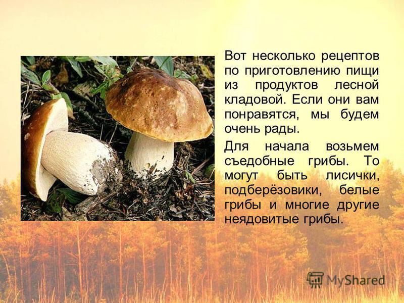 Вот несколько рецептов по приготовлению пищи из продуктов лесной кладовой. Если они вам понравятся, мы будем очень рады. Для начала возьмем съедобные грибы. То могут быть лисички, подберёзовики, белые грибы и многие другие неядовитые грибы.
