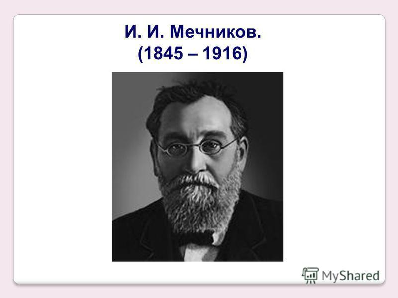 И. И. Мечников. (1845 – 1916)