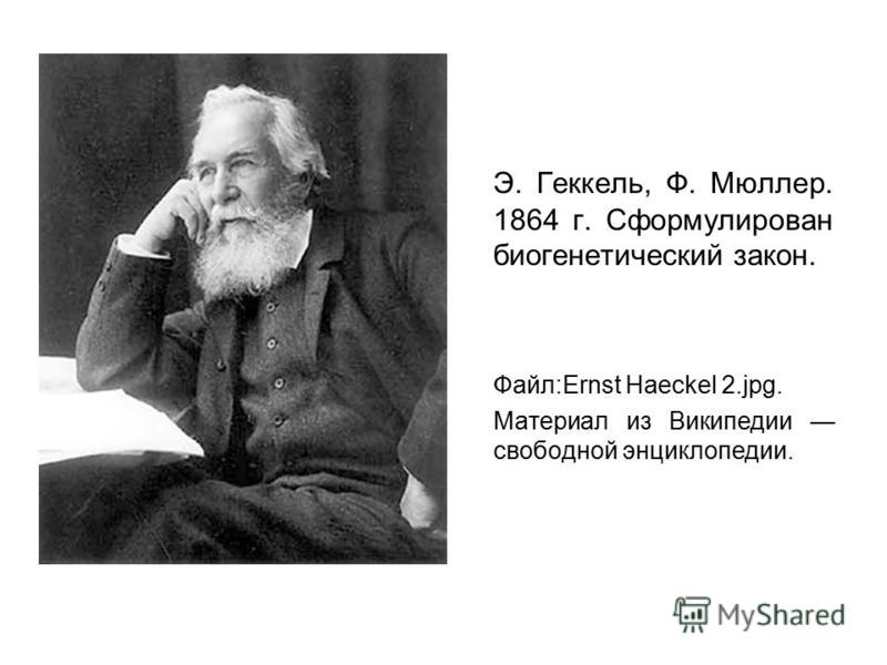 Э. Геккель, Ф. Мюллер. 1864 г. Сформулирован биогенетический закон. Файл:Ernst Haeckel 2.jpg. Материал из Википедии свободной энциклопедии.