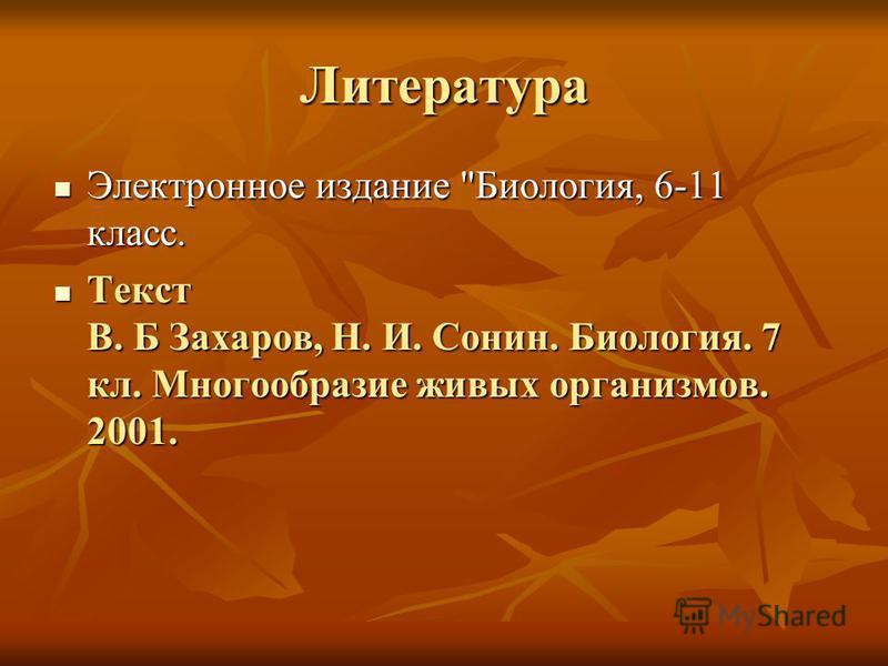 Литература Электронное издание