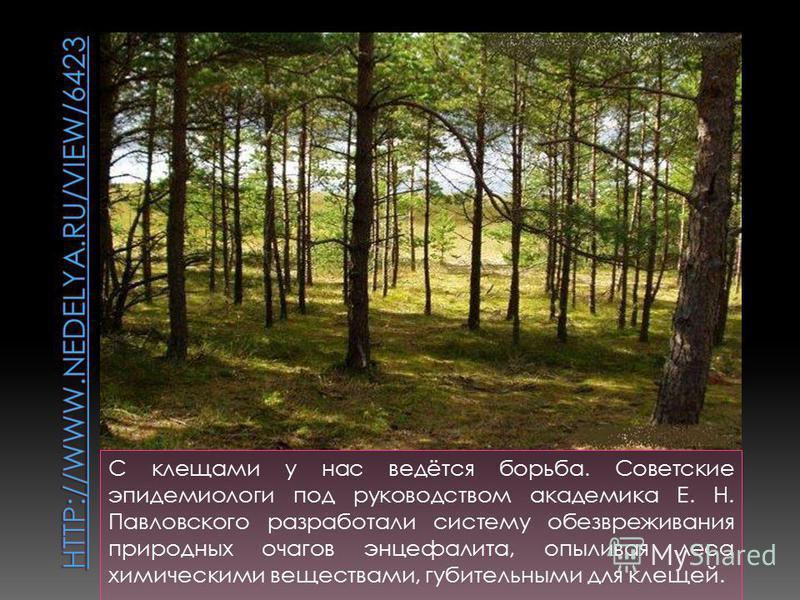 С клещами у нас ведётся борьба. Советские эпидемиологи под руководством академика Е. Н. Павловского разработали систему обезвреживания природных очагов энцефалита, опыливая леса химическими веществами, губительными для клещей.