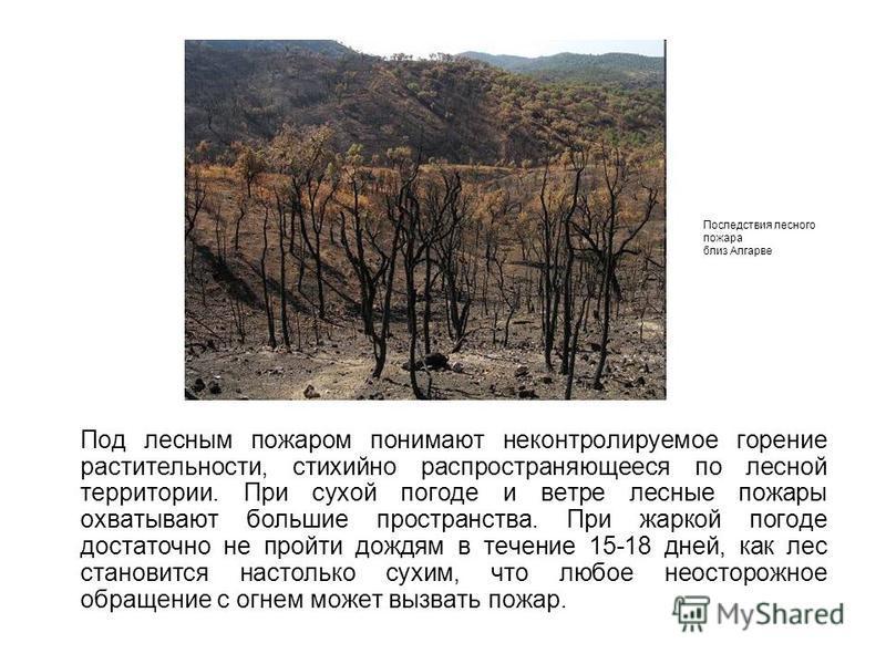 Под лесным пожаром понимают неконтролируемое горение растительности, стихийно распространяющееся по лесной территории. При сухой погоде и ветре лесные пожары охватывают большие пространства. При жаркой погоде достаточно не пройти дождям в течение 15-