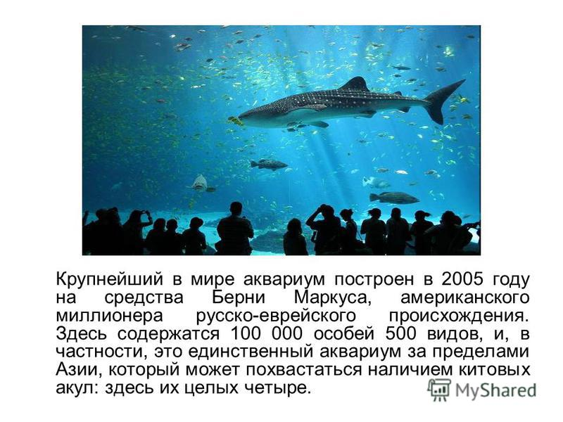Крупнейший в мире аквариум построен в 2005 году на средства Берни Маркуса, американского миллионера русско-еврейского происхождения. Здесь содержатся 100 000 особей 500 видов, и, в частности, это единственный аквариум за пределами Азии, который может