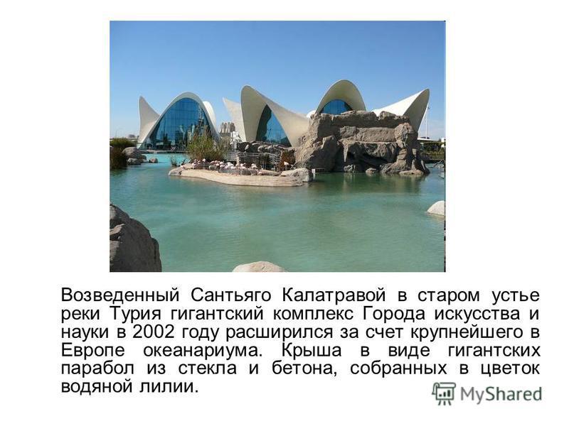 Возведенный Сантьяго Калатравой в старом устье реки Турия гигантский комплекс Города искусства и науки в 2002 году расширился за счет крупнейшего в Европе океанариума. Крыша в виде гигантских парабол из стекла и бетона, собранных в цветок водяной лил