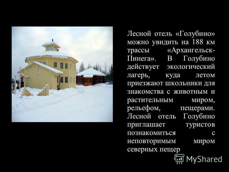 Лесной отель «Голубино» можно увидеть на 188 км трассы «Архангельск- Пинега». В Голубино действует экологический лагерь, куда летом приезжают школьники для знакомства с животным и растительным миром, рельефом, пещерами. Лесной отель Голубино приглаша