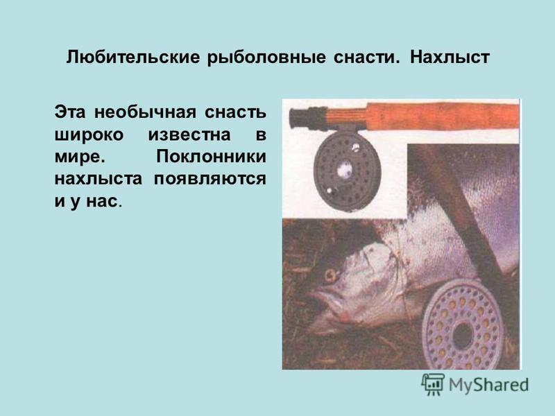 Любительские рыболовные снасти. Нахлыст Эта необычная снасть широко известна в мире. Поклонники нахлыста появляются и у нас.