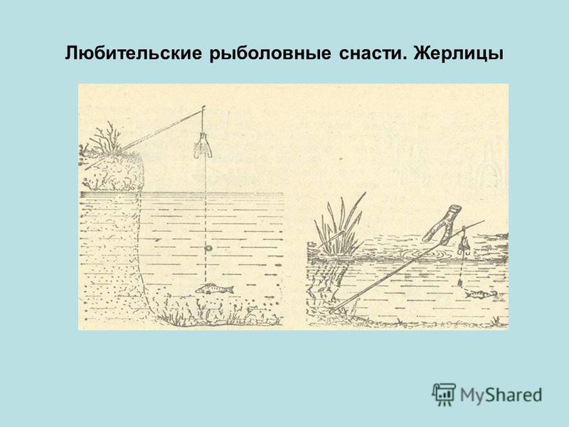 Любительские рыболовные снасти. Жерлицы