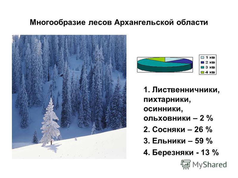Многообразие лесов Архангельской области 1. Лиственничники, пихтарники, осинники, ольховники – 2 % 2. Сосняки – 26 % 3. Ельники – 59 % 4. Березняки - 13 %