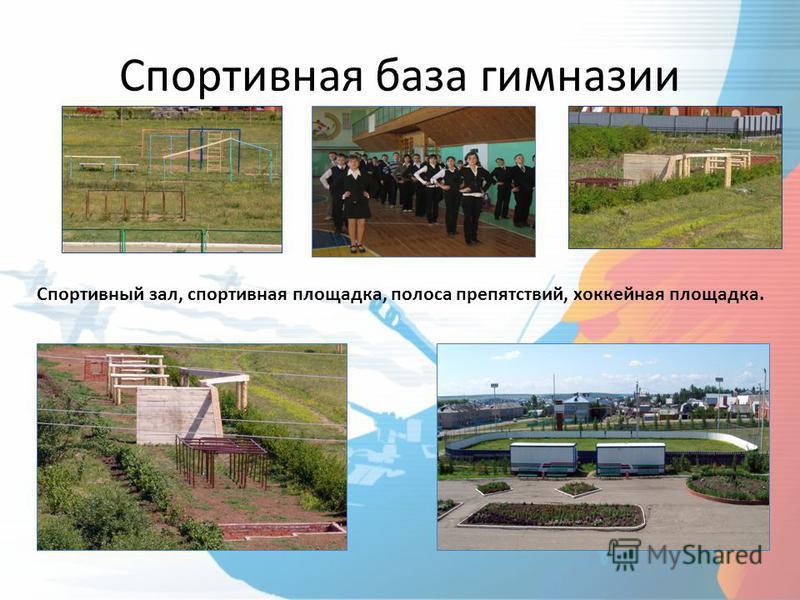 Спортивная база гимназии Спортивный зал, спортивная площадка, полоса препятствий, хоккейная площадка.