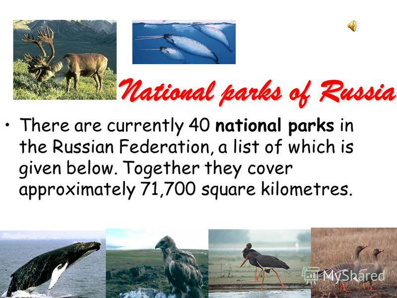 National parks of Russia There are currently 40 national parks in the Russian Federation, a list of which is given below. Together they cover approximately 71,700 square kilometres.