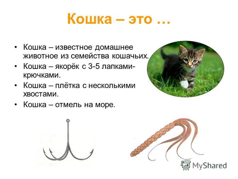 Кошка – это … Кошка – известное домашнее животное из семейства кошачьих. Кошка – якорёк с 3-5 лапками- крючками. Кошка – плётка с несколькими хвостами. Кошка – отмель на море.