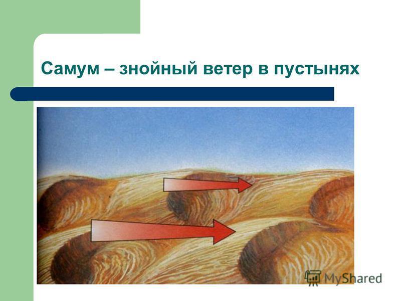 Самум – знойный ветер в пустынях