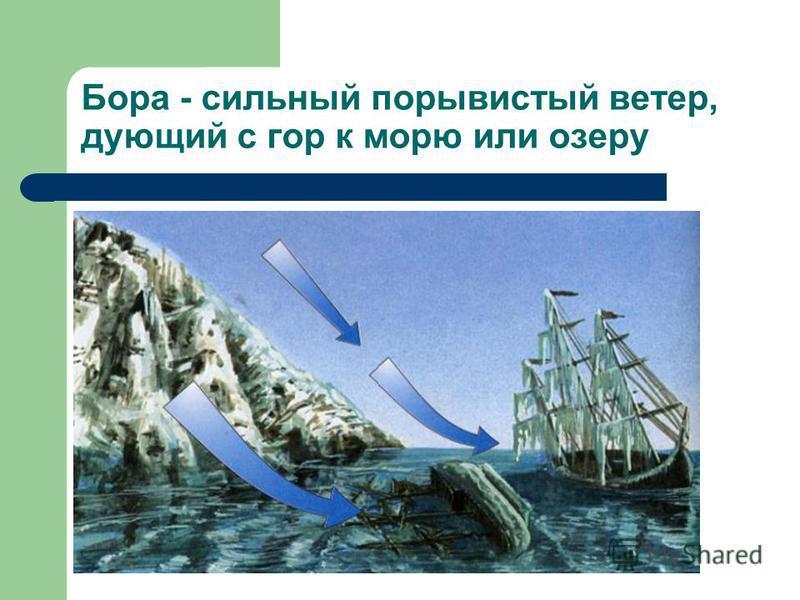 Бора - сильный порывистый ветер, дующий с гор к морю или озеру