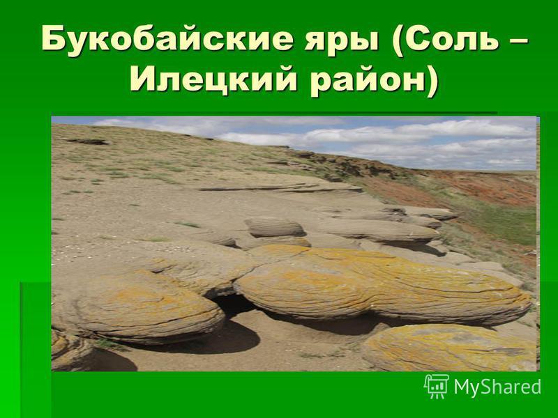 Букобайские яры (Соль – Илецкий район)