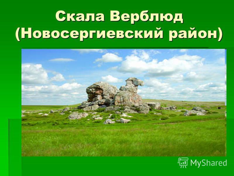 Скала Верблюд (Новосергиевский район)